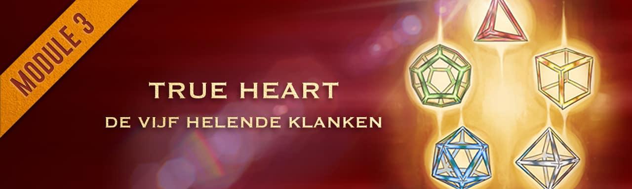 Module 4: True Heart course image