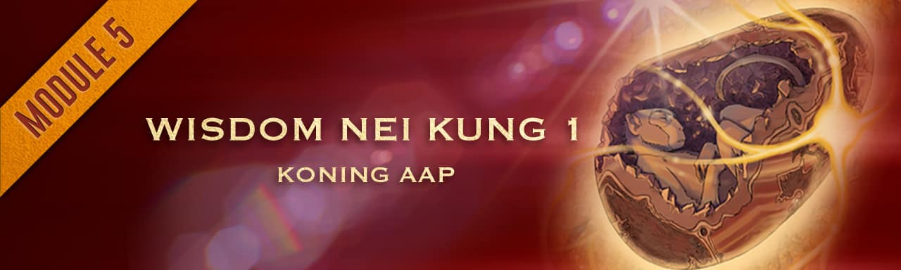 5. Wisdom Nei Kung 1 - Koning Aap course image
