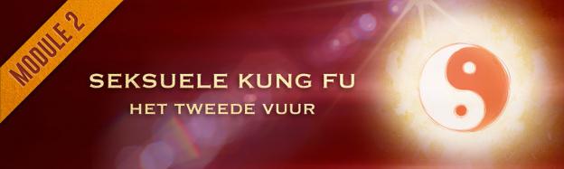 2. Seksuele Kung Fu (nieuw) course image
